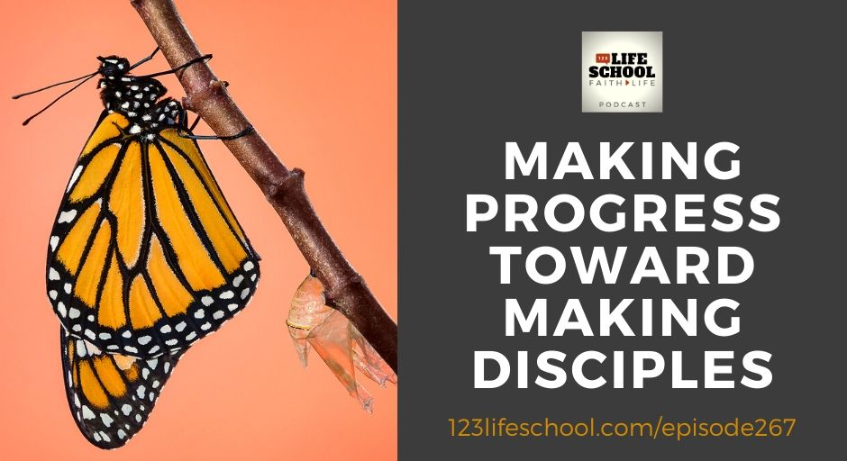 making progress toward making disciples